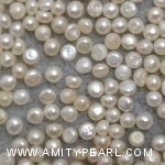 6444 button pearl about 2.5-2.75mm.jpg